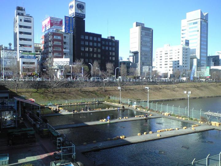 One of the stranger things in Tokyo is this urban fishing spot in Ichigaya.