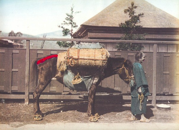 This is a 駄馬 daba, a pack horse. I don't know how many da the horse is carrying, but you get the idea...