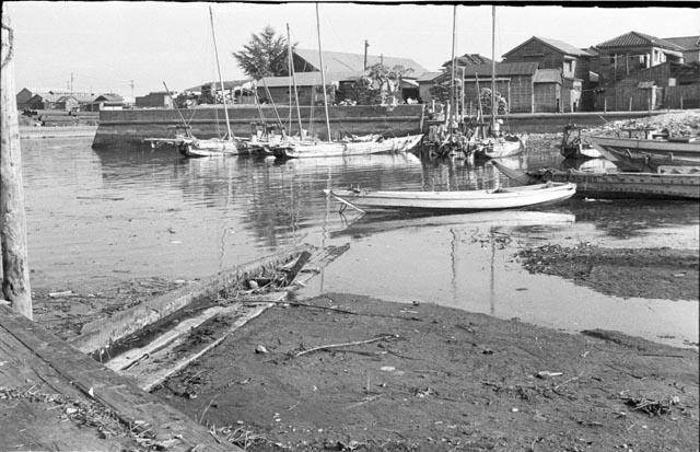 samezu low tide