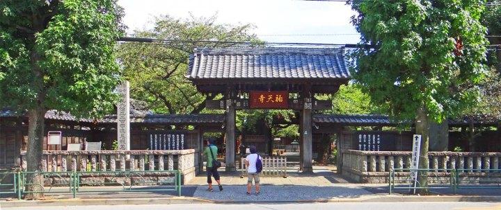 Yūten-ji boasts its fair share of trees.
