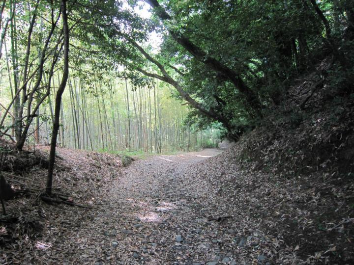 The so-called silk road in hachioji, near doryo-do the haunted temple