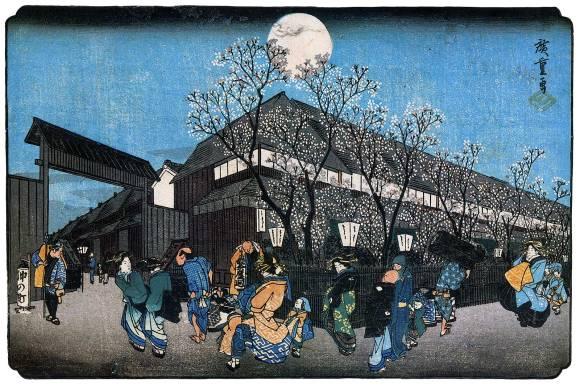 yoshiwara night hanami