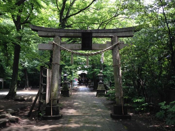 lpganei shrine.jpg