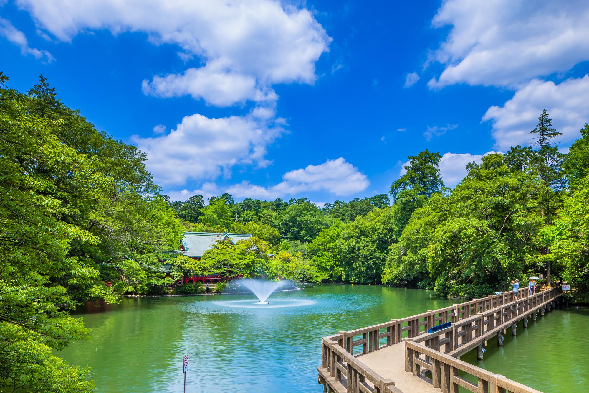 shinjuku walking tour park