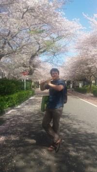 Devdut played the flute as we took a walk through the pink Sakuras.