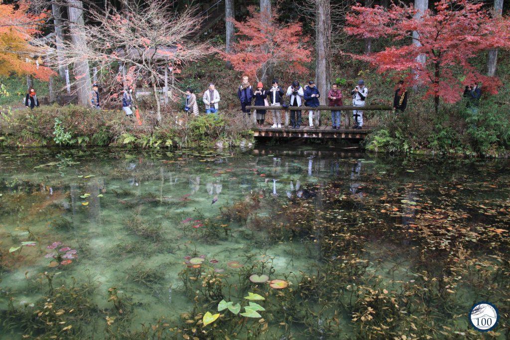 Lago de Monet em Gifu