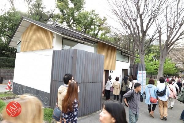 Sakura Best viewing, Imperial garden, Chidorigafuchi. 360 degree cherry blossom experience (2)