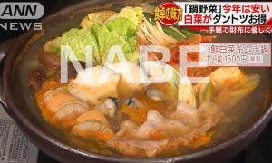 Nabe Dish on it's Cheap Ingredient Price