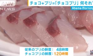 """""""CHOCO-BURI"""", long lasting freshness than the regular fish"""
