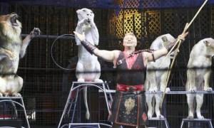 Kinoshita Circus kicks off in Osaka