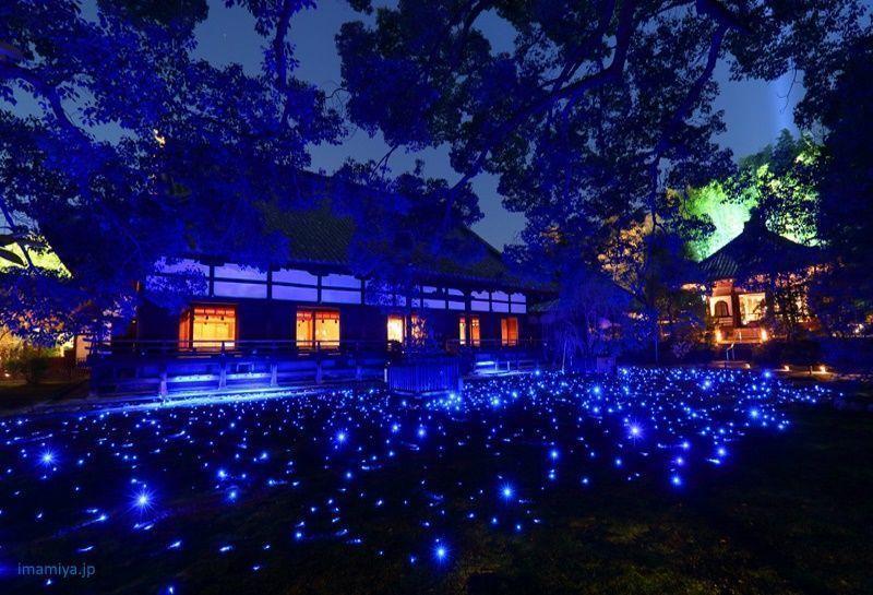 Encendido del templo Shorenin de Kioto @ Templo Shorenin (青蓮院) | Kyoto | Kyoto Prefecture | Japón