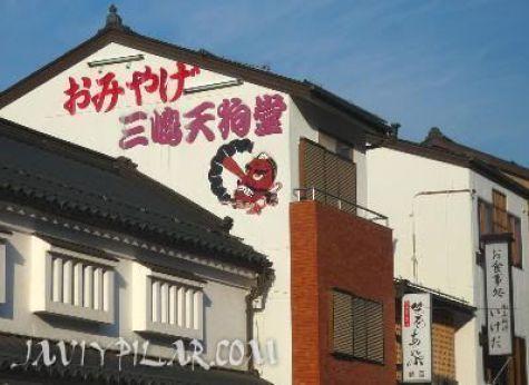 Dibujo publicitario de un tengu en un edificio del monte Koya (Wakayama, Japón)