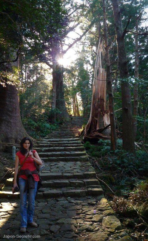 La cuesta de Daimon Zaka hacia el santuario Nachi Taisha. Año 2009