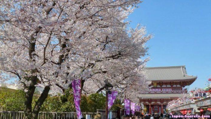 """Festivales de Japón: el Kanbutsue (灌仏会) o """"cumpleaños de Buda"""", conocido como Hana Matsuri (花祭) o """"Festival de las Flores"""", celebrado en Japón el 8 de abril. Imagen de la celebración en el templo Sensoji de Tokio, con los cerezos (sakura) en flor"""
