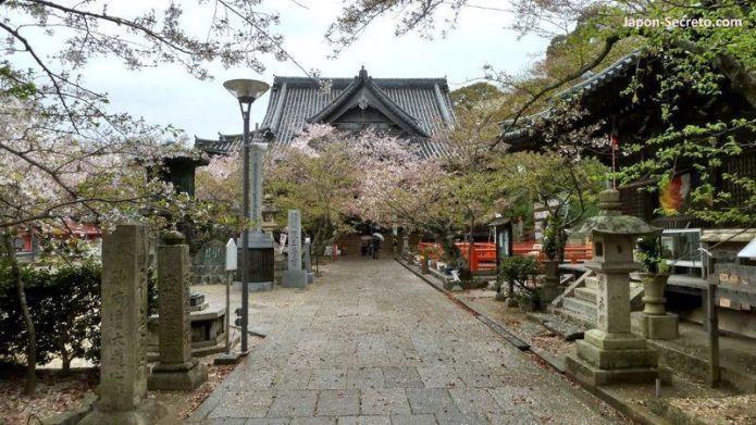 Lugares secretos de Japón en los que disfrutar de los cerezos (sakura) en flor: el templo Kimiidera de Wakayama