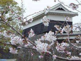 Rincón del Castillo de Kumamoto (Kyushu). Foto tomada en la primavera de 2016, justo antes de que un terremoto dañara parte del edificio