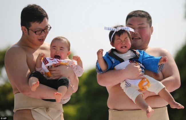 Nakizumo, el festival en que luchadores de sumo hacen llorar a bebés @ Templo Sensōji | Taito | Tokyo | Japón