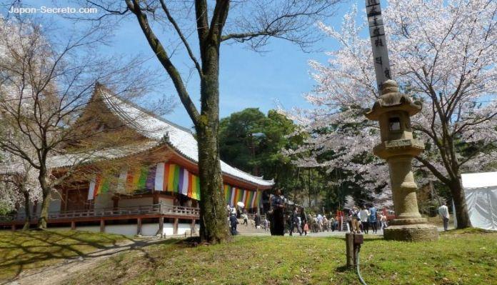 """Sala principal o """"Kondō"""" (金堂) del templo Daigoji (Kioto) durante el florecer de los cerezos (sakura). Hanami"""
