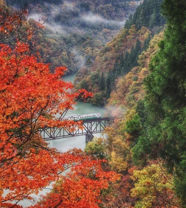 Línea Tadami de tren. Tohoku. Prefectura de Fukushima. Otoño
