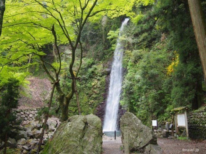 Cascada de Yoro. Yoro Park. Yoro (Gifu). Japón