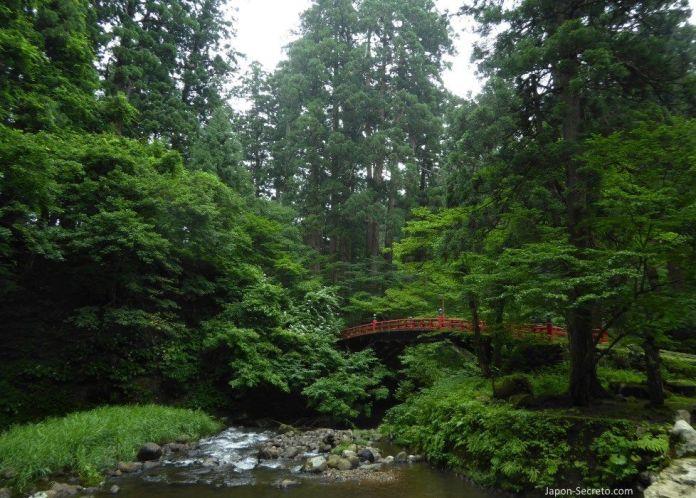 Japón. Ruta de peregrinación Dewa Sanzan. Monte Haguro (Hagurosan). Bosque de arces y puente rojo