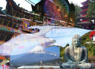 Excursiones desde Tokio: Kamakura, Nikko, Hakone, Monte Fuji, Yokohama