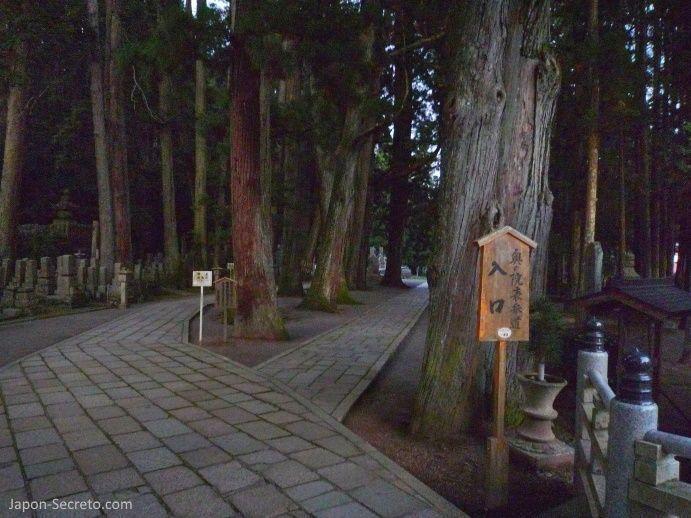 Viajar al Monte Koya o Koyasan (Wakayama): cementerio Okunoin. Lápidas y musgo.