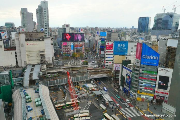 Vistas del cruce de Shibuya desde el edificio Hikarie. Tokio, que ver y hacer. Guia de viaje