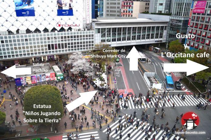 Vistas del cruce de Shibuya. Tokio, que ver y hacer. Guia de viaje