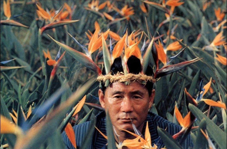 Mon top 5 des films de Takeshi Kitano