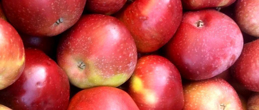 owoce po japońsku - słówka japońskie - japonia-info.pl