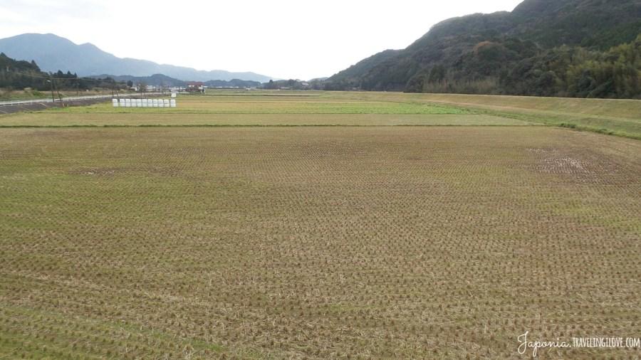 Kyushu no Oshogatsu (19)