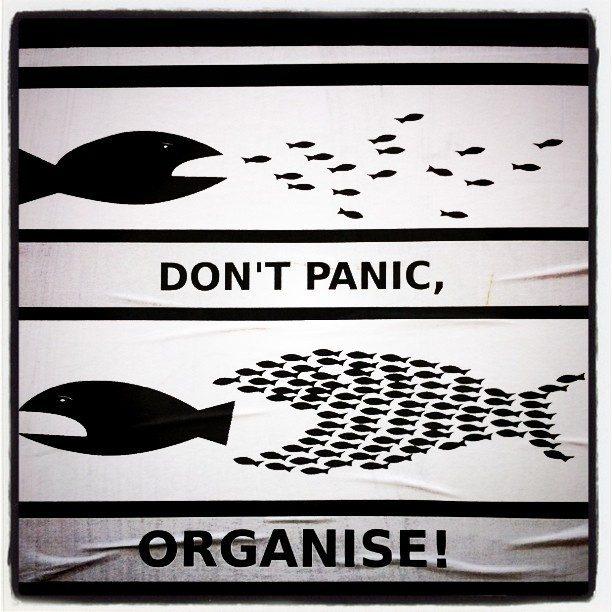 När paniken förblindar