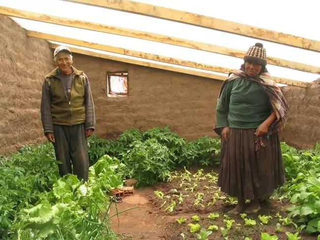 "Produzindo comida ""debaixo da terra"""