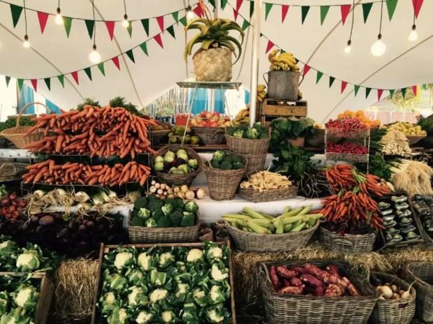 Feiras agroecológicas: importância econômica e sócio cultural