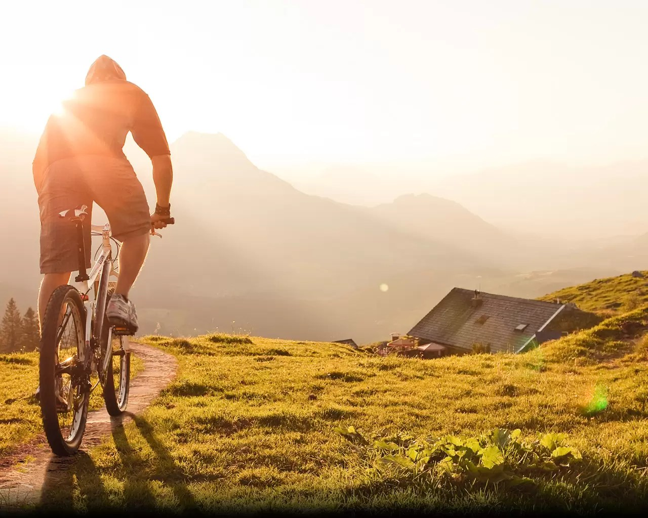 s_con_mountainbike
