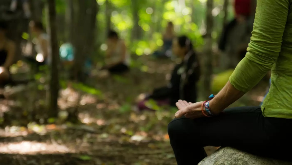 A experiência em um retiro de meditação Vipassana