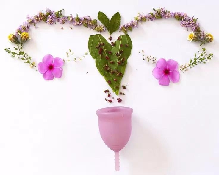 9 perguntas e respostas sobre o coletor menstrual