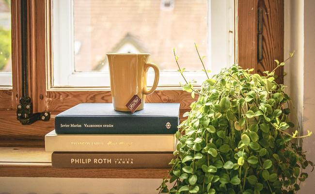 de la lumière pour les plantes d'intérieur