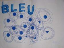 Bleu4