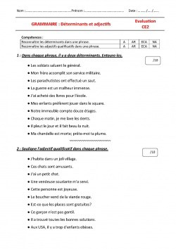 Evaluations grammaire CE2