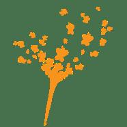 Aménager un jardin senoriel & thérapeutique : le suivi de chantier