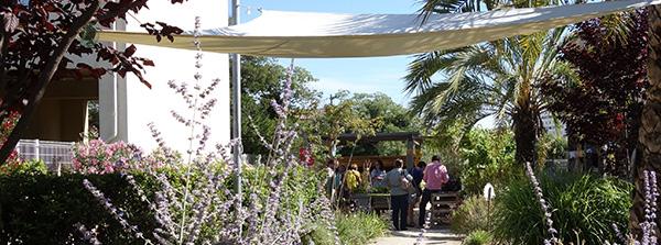 Un jardin thérapeutique en entreprise, c'est moins de stress, une ambiance de travail plus agréable, et des salariés en meilleure santé !