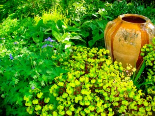 Creating a focal point in the shade