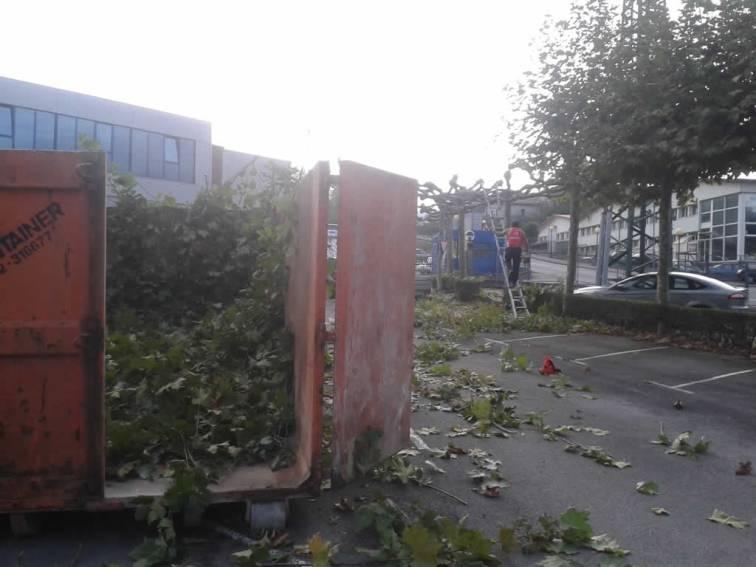 mantenimiento-jardin-empresa-20141010_171434