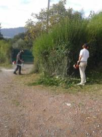 mantenimiento-jardin-zubieta-20141007_105047