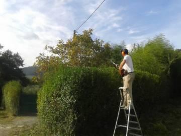 mantenimiento-jardin-zubieta-20141007_111149