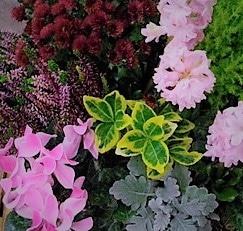 perigny-garden-creation de bouquet - fleuriste val de marne (24)
