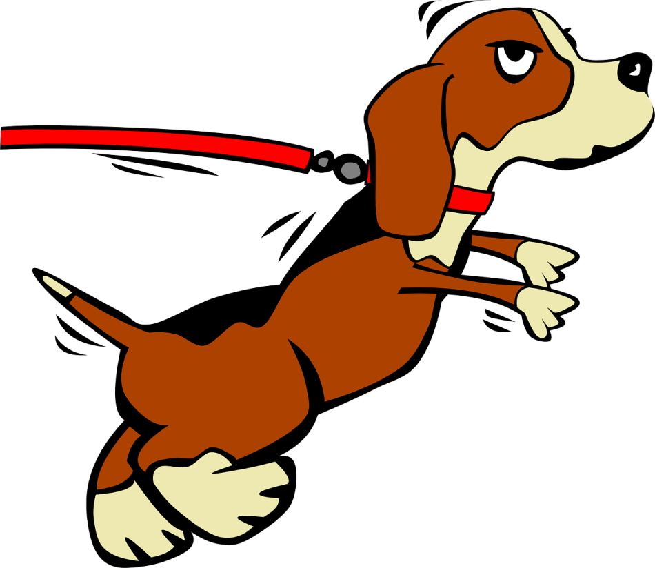 20170905D Ciker-Free-Vector-Images, Pixabay.png