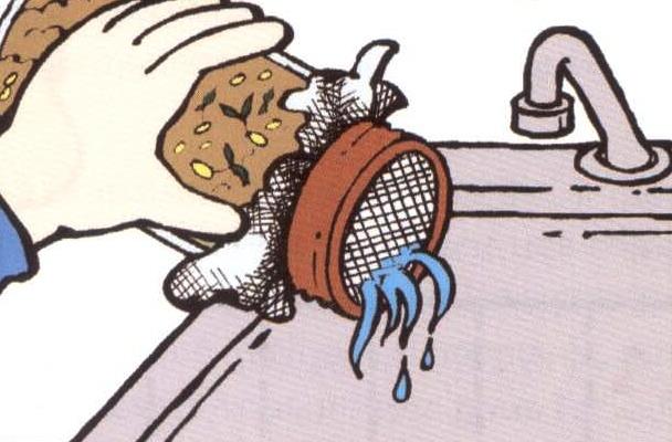 Illustration d'un pot Mason avec une couverture en moustiquaire avec des graines germés à l'intérieur. Le pot est penché et l'eau s'en draine.